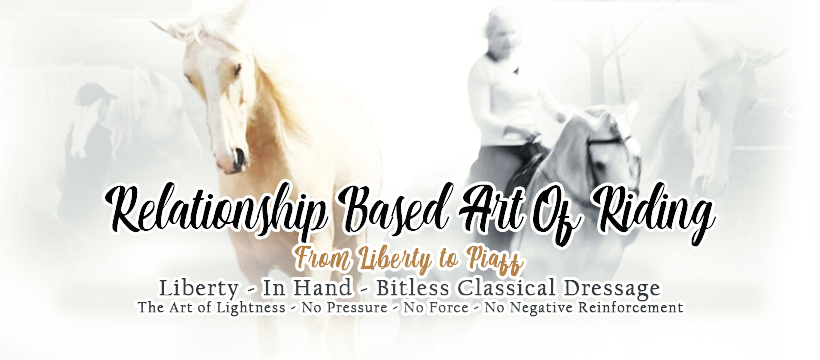 Relationship Based Art of Riding F