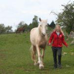 Relationsbaserad hästkommunikation™