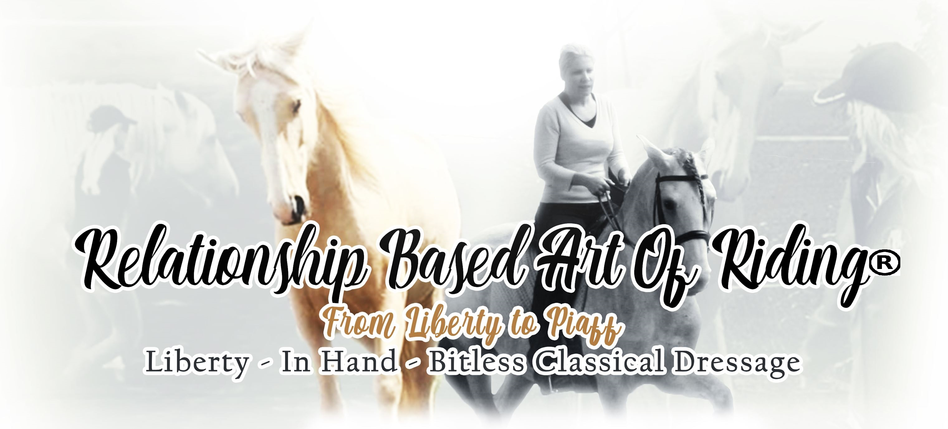 Relationship-based-art-of-riding